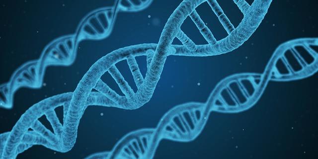 痛風の原因はストレスと遺伝?